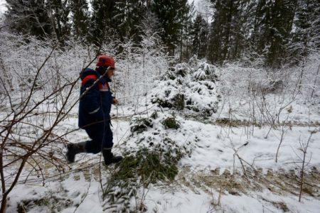 8 тысячам потребителей в Тверской области вернули электричество