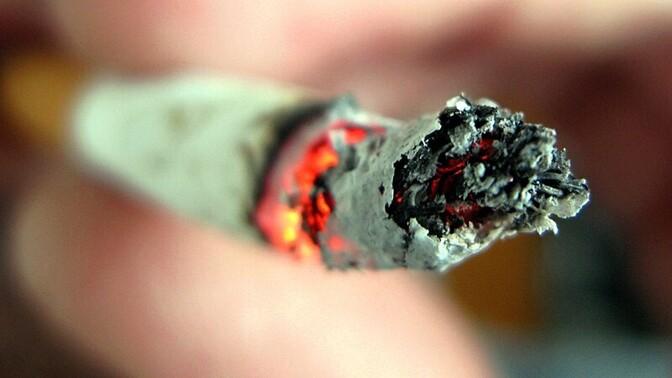 Самозатухающие сигареты: все, что нужно знать жителям Твери