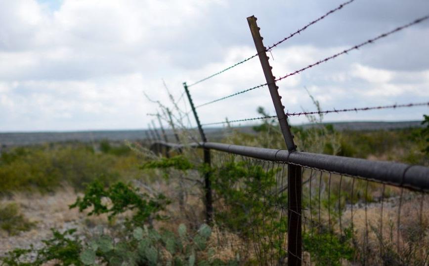 Иностранцев, которые нелегально пересекли границу, арестовали в Тверской области