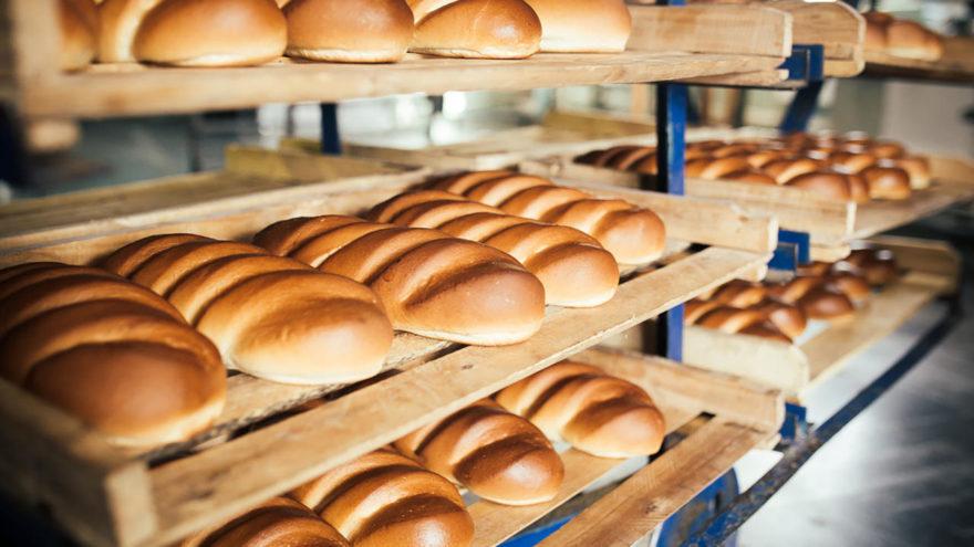 Тверская область продолжит поддерживать хлебопеков региона в 2021 году