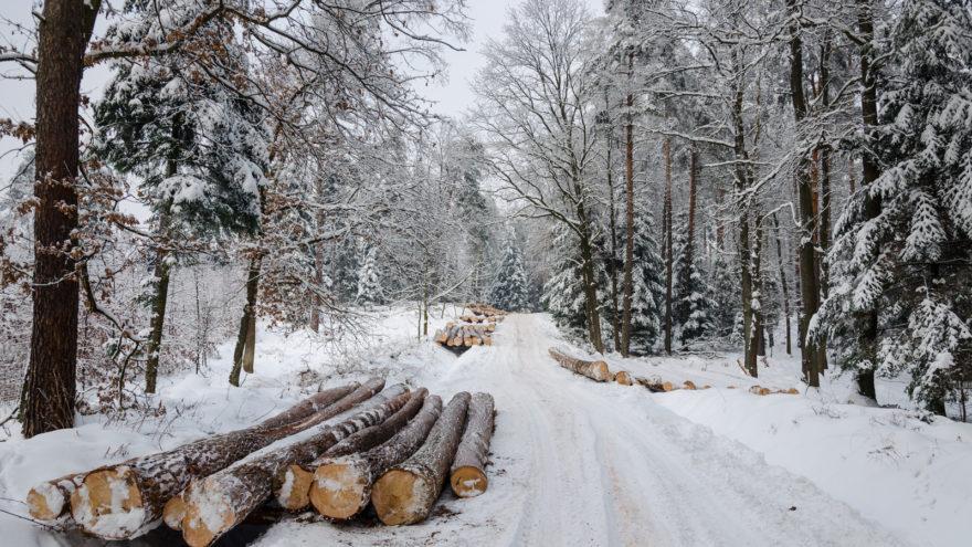 Предприятие, засорившее дорогу в Тверской области, заплатит крупный штраф