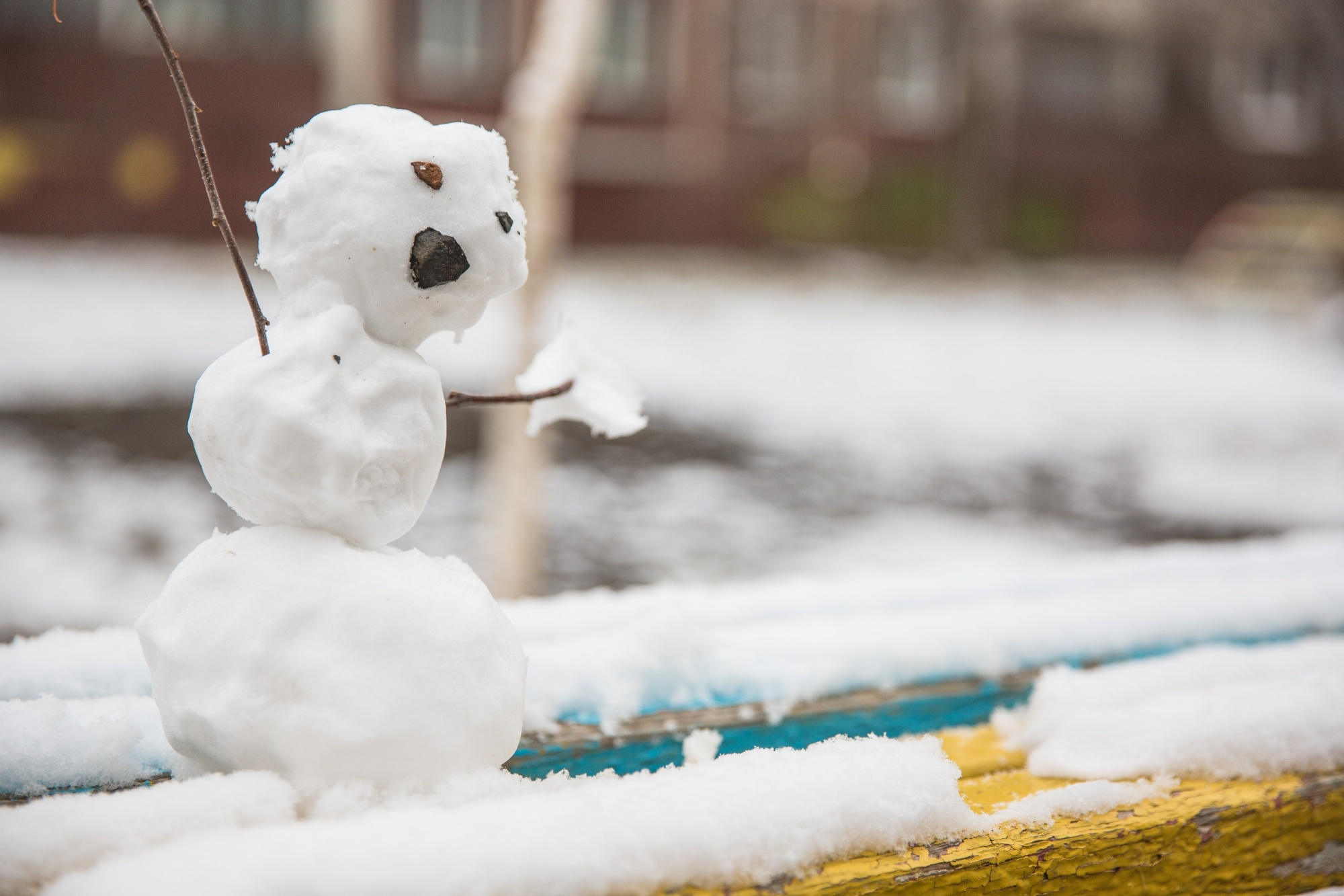 После короткой оттепели в Тверскую область снова придут морозы