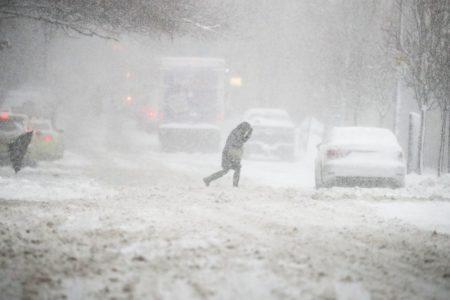 """В Тверской области """"разгребают"""" последствия снегопада"""