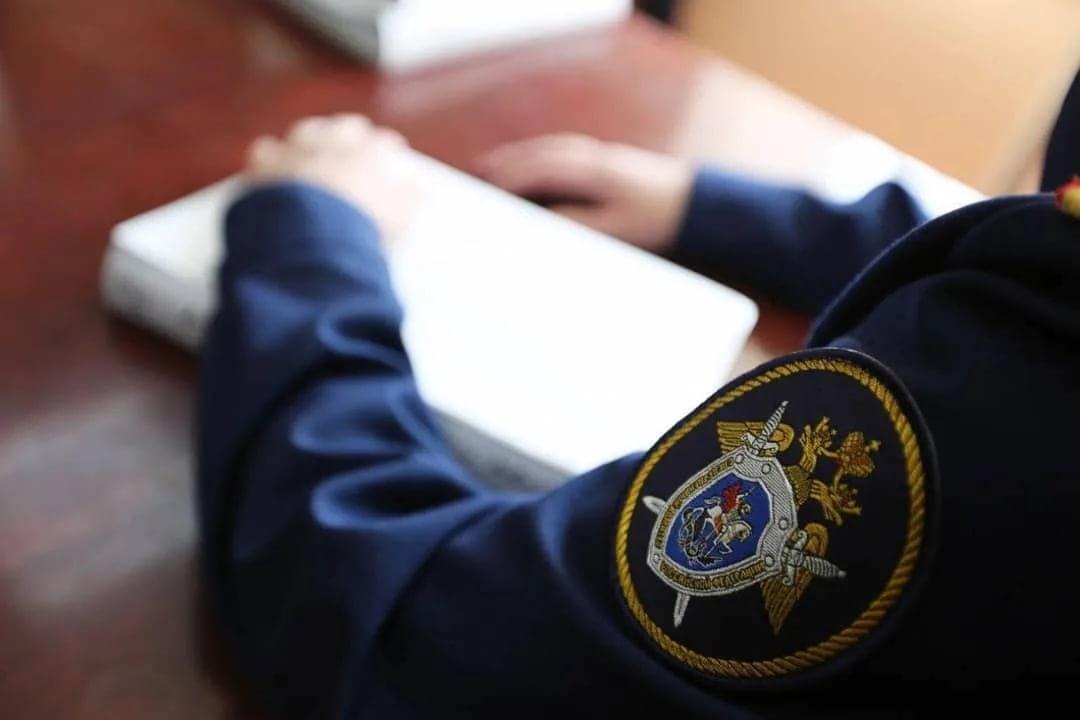 Девочка, пропавшая в Тверской области, сама вернулась домой