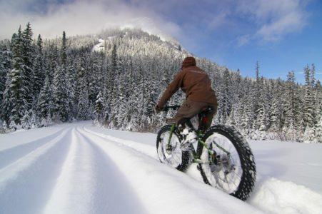 Житель Тверской области «уехал» на велосипеде «Стелс» в колонию строгого режима