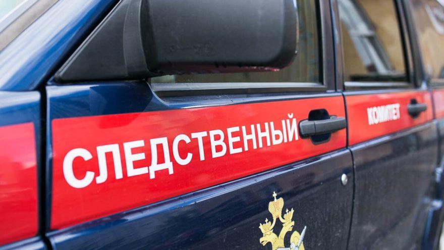 В Тверской области 17-летняя девушка замёрзла и умерла