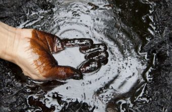 Под Тверью почву заливали нефтепродуктами