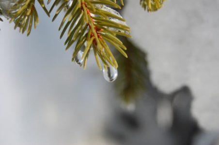 Крещенские морозы в Тверской области вытеснит оттепель