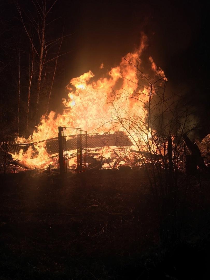 В сгоревшем дотла доме в Тверской области нашли останки челове
