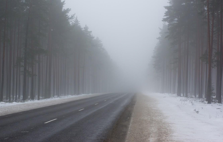 Жителей Тверской области предупредили об утреннем тумане