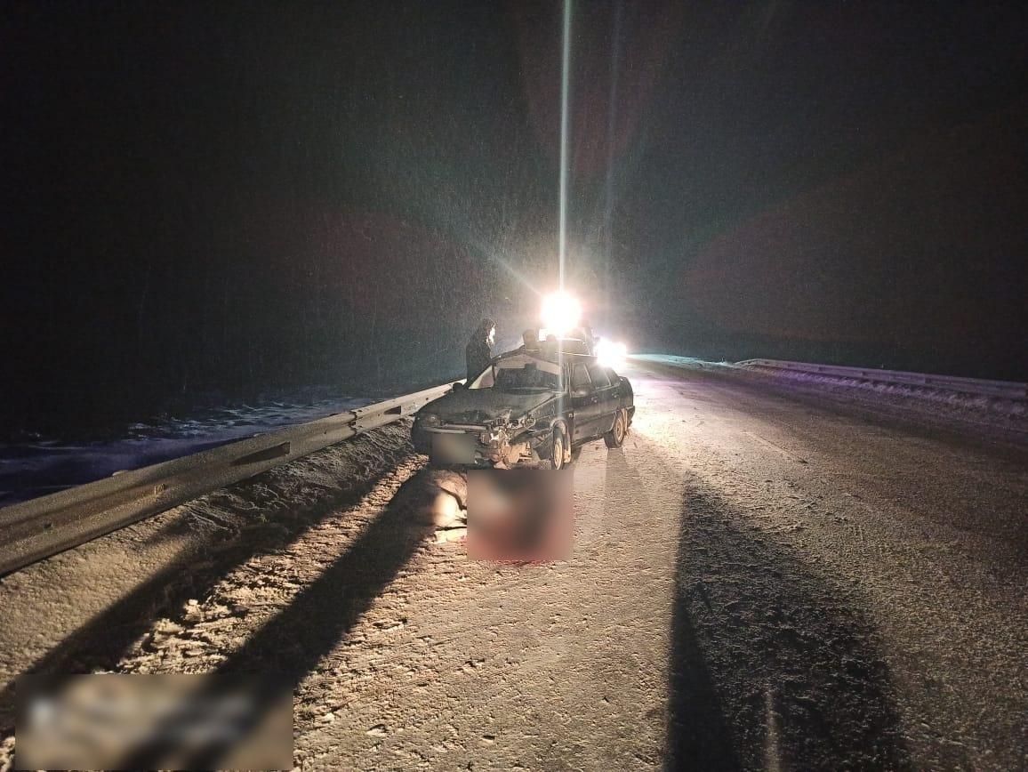Опубликовано фото последствий столкновения с лосем в Тверской области