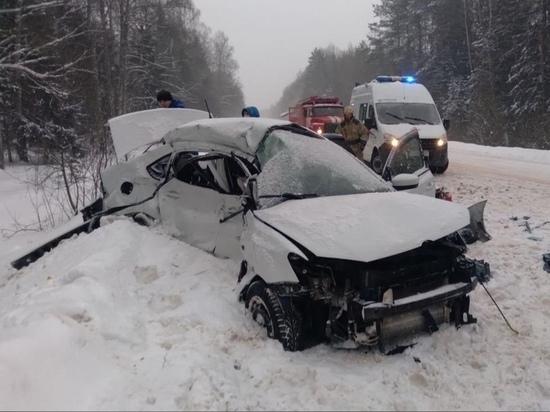 Три человека погибли на дороге под Торжком в Тверской области