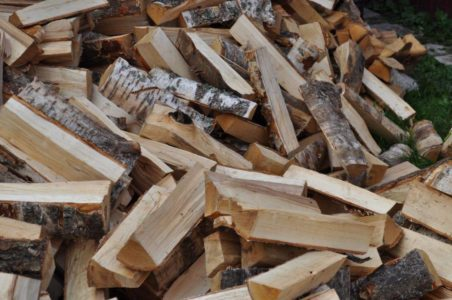 Молодой житель Тверской области полгода топил печку чужими дровами