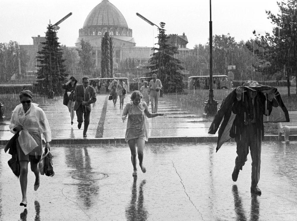 Тише!В Тверской области погоду передают