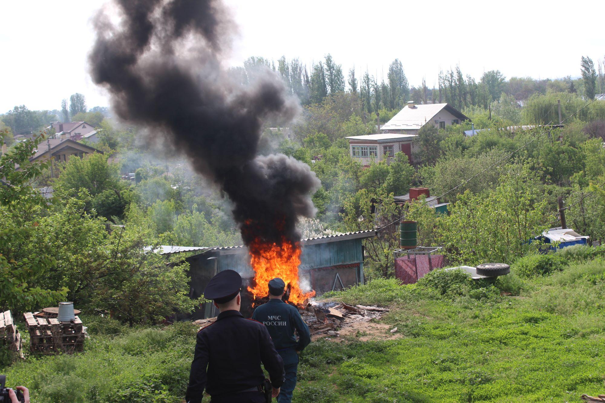 Жителям Тверской области запретили жечь костры, но жарить шашлыки разрешили
