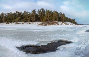 Мужчина провалился под лёд, спасая собаку в Тверской области