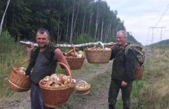 Летом жителям Тверской области понадобится много корзин для ягод и грибов