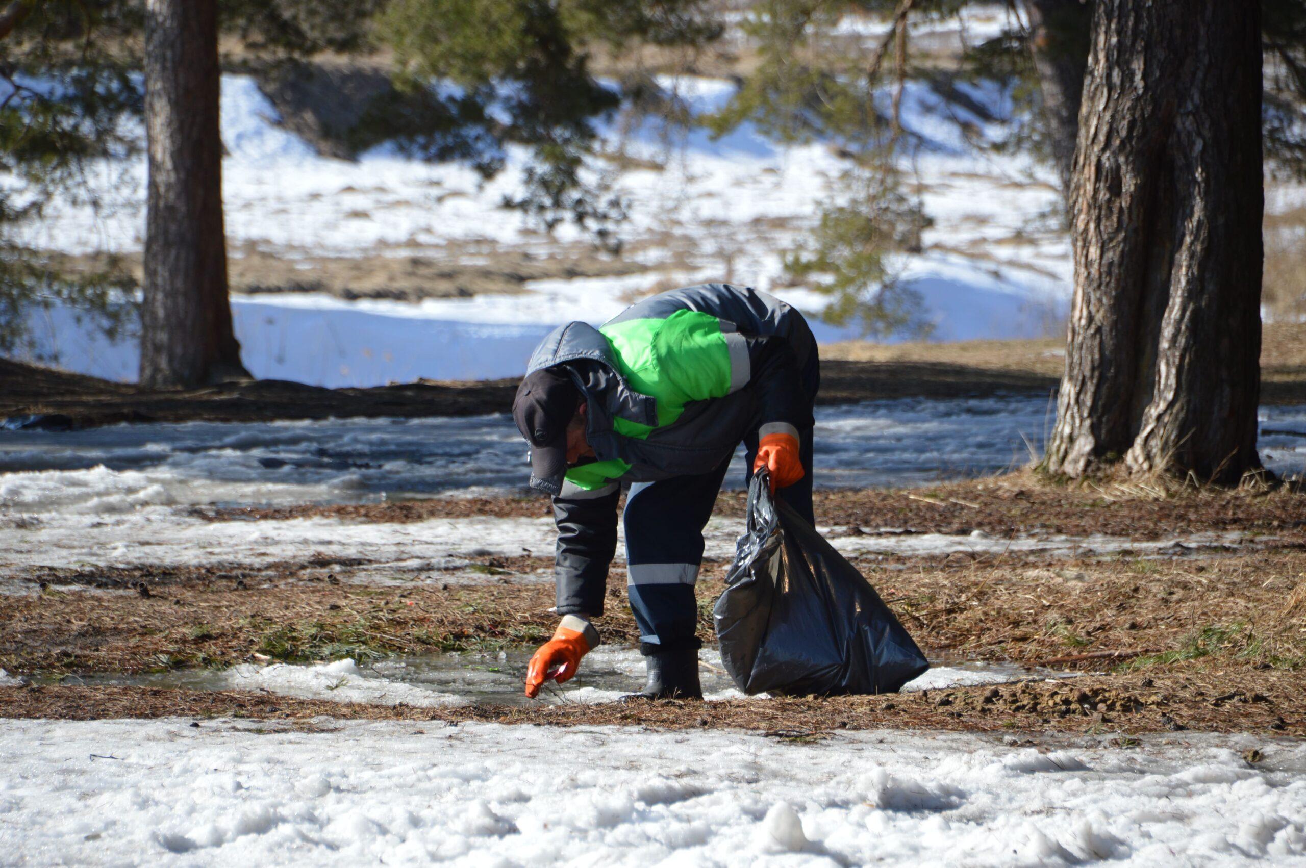 В Твери ищут тех, кто загрязняет рощи и парки