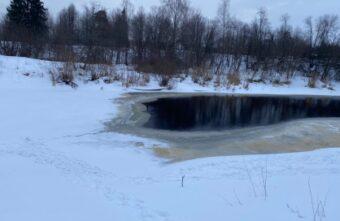 В Тверской области нашли тело пропавшей 10-летней девочки