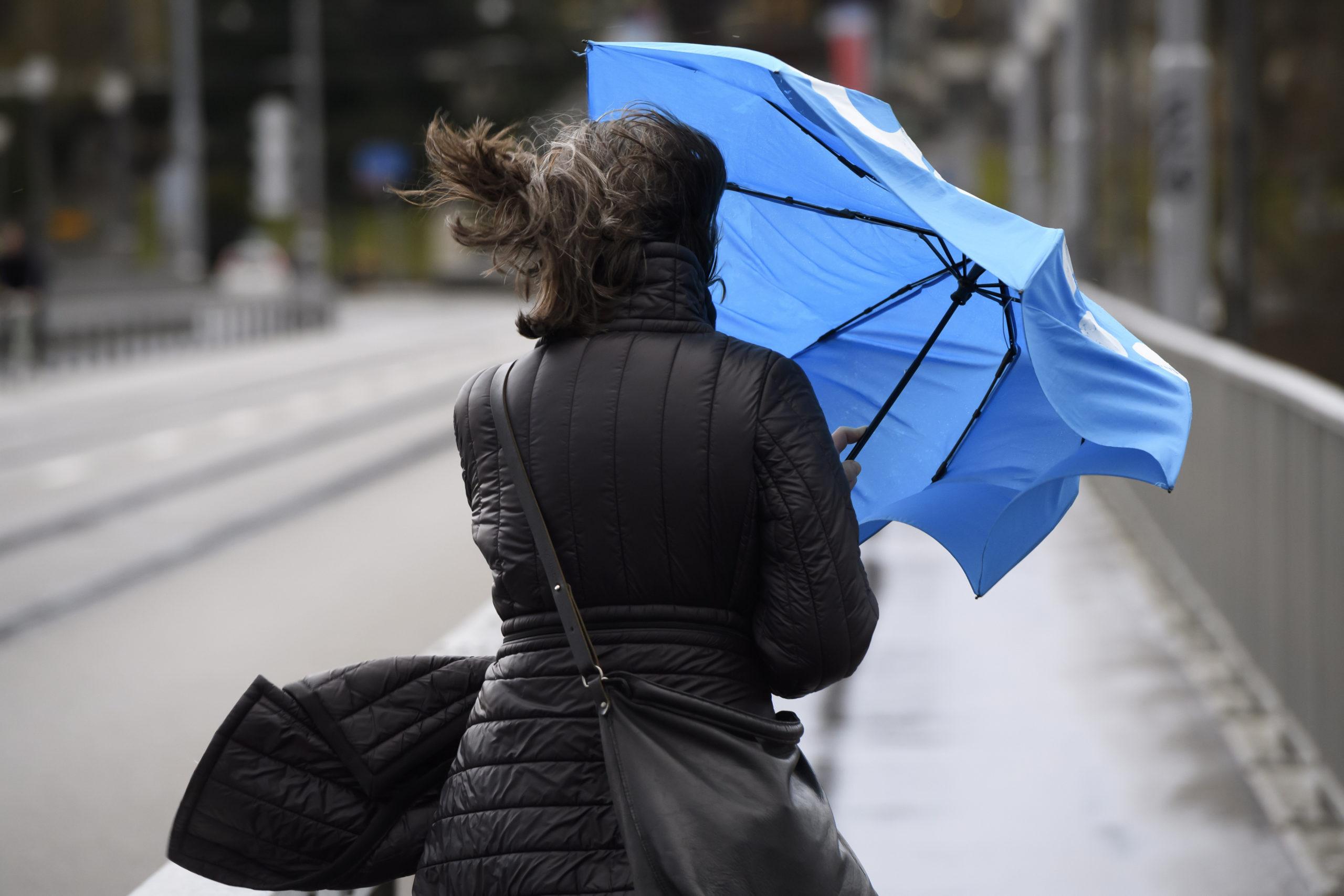 Сильный южный ветер задует в Тверской области