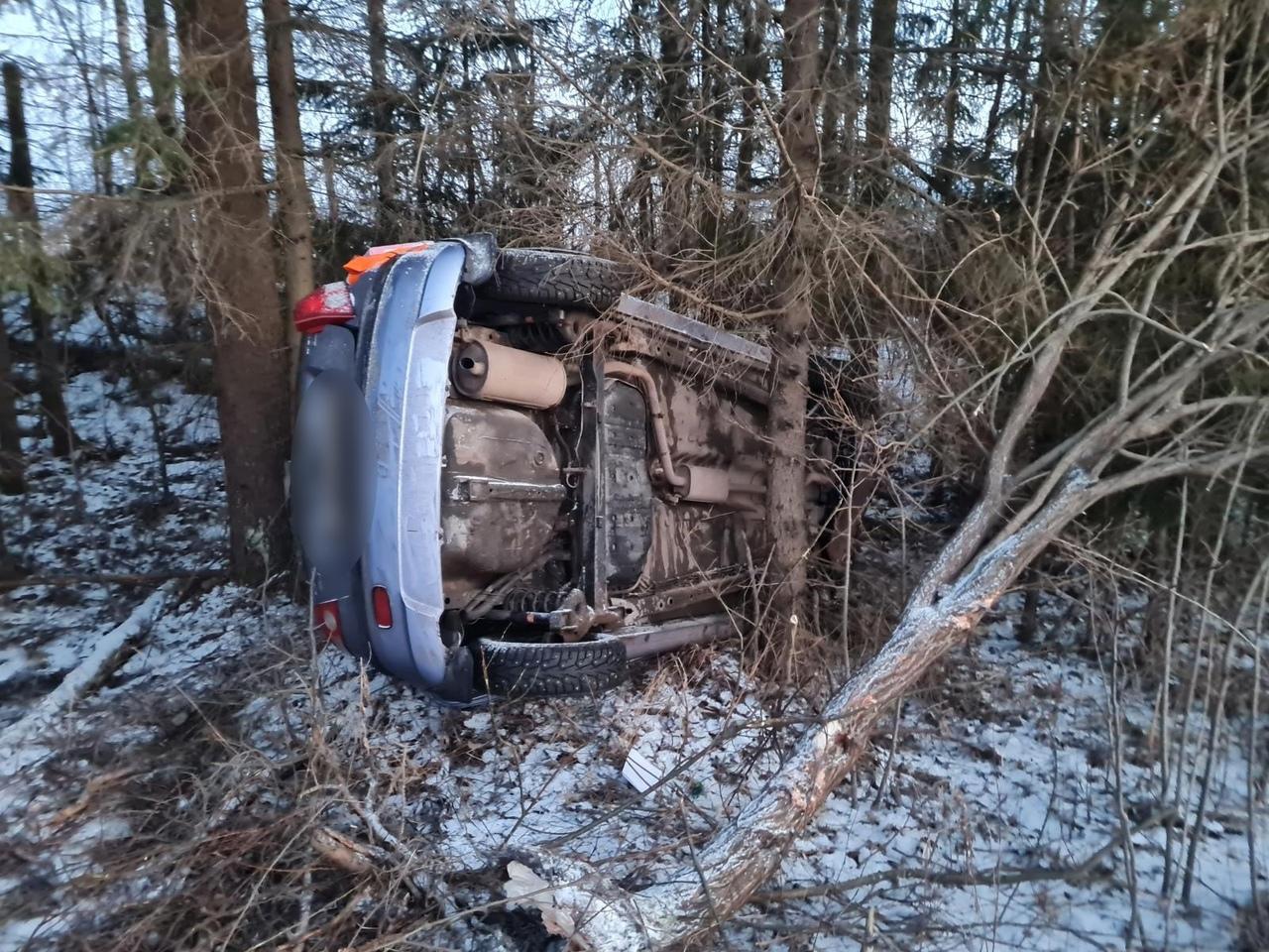 В Тверской области опрокинулась иномарка, пострадали два человека