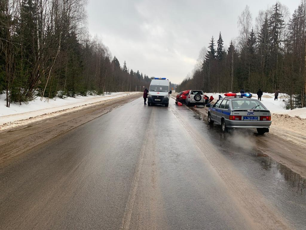 Два человека пострадали в лобовом столкновении в Тверской области