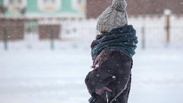 Мощное арктическое вторжение ожидает Тверскую область