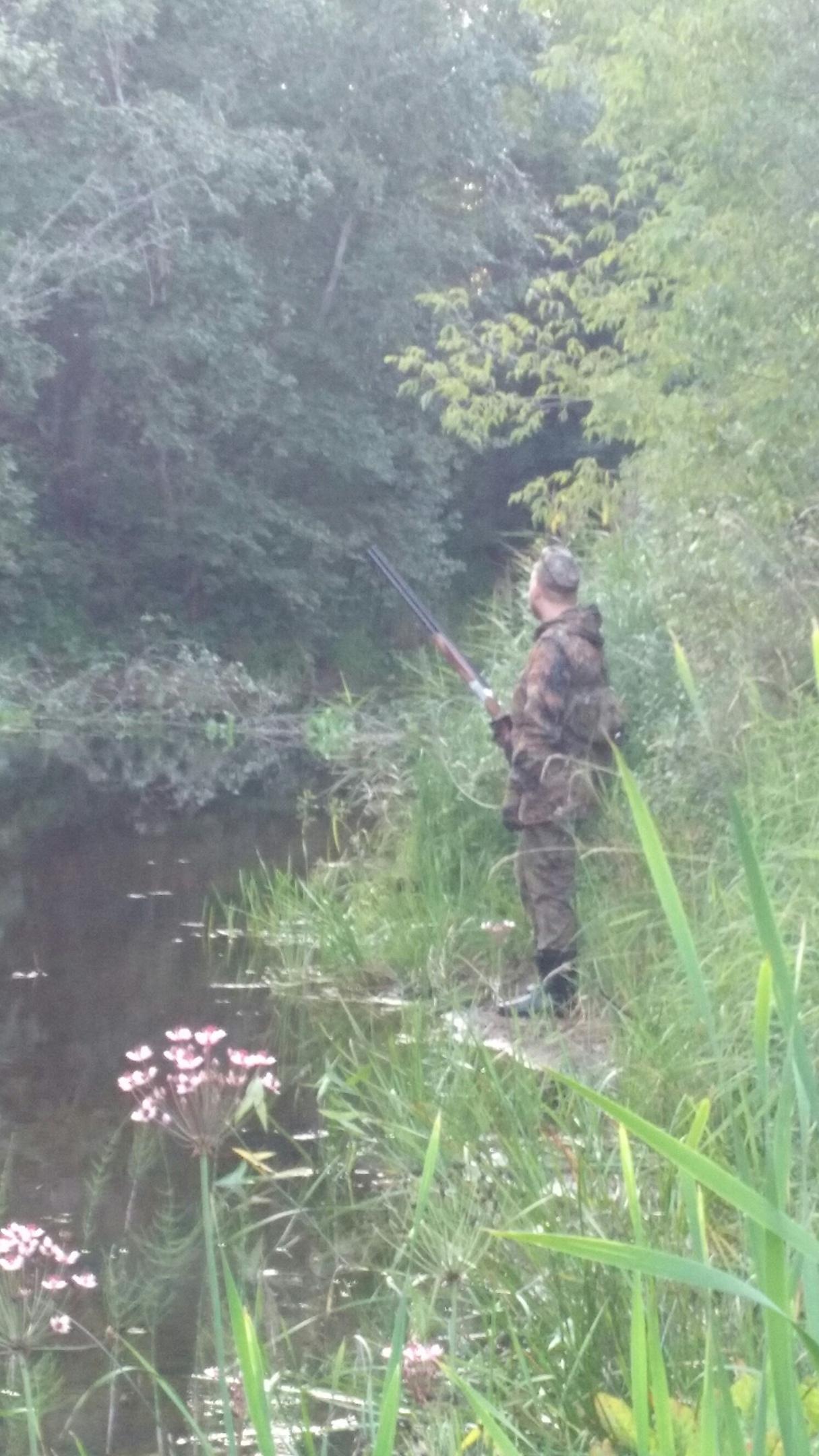 """""""Больные люди"""": тверские охотники высказались о скандальном убийстве лосихи и кодексе"""