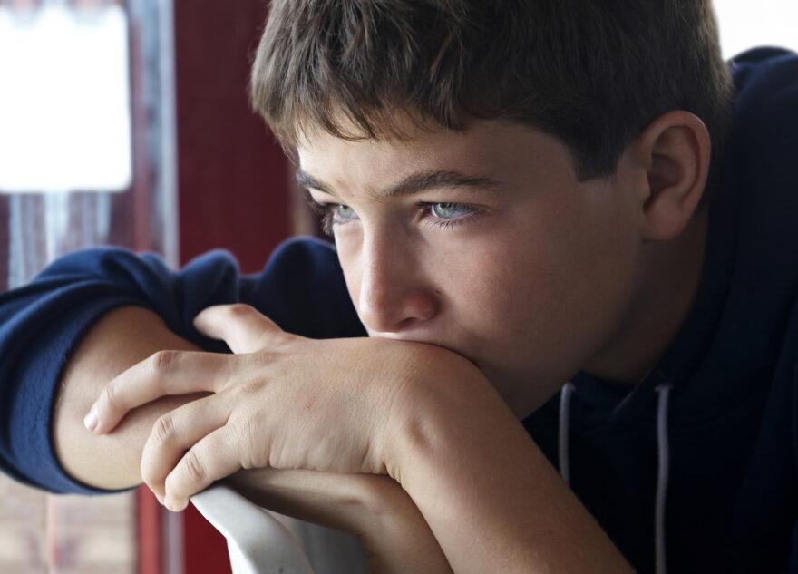 В школах Тверской области хотят ввести уроки по взрослой жизни