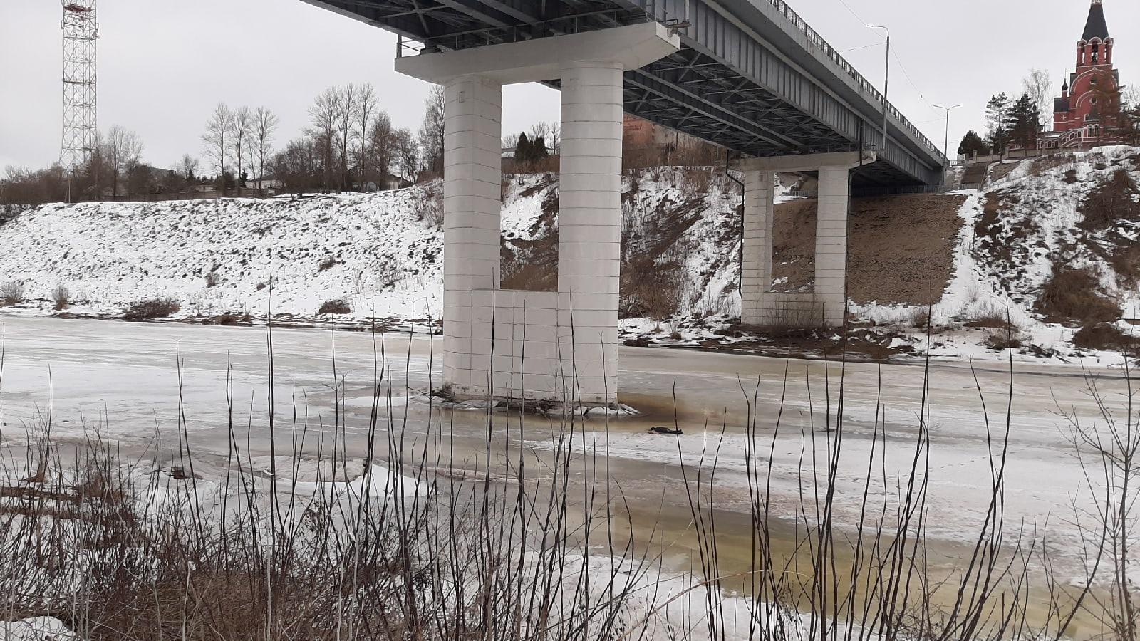 Под Новым мостом в Тверской области нашли труп мужчины