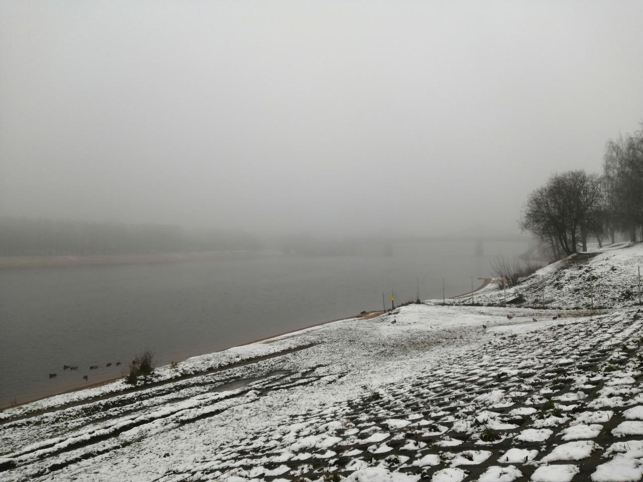 Тверскую область на сутки накроет сильный туман