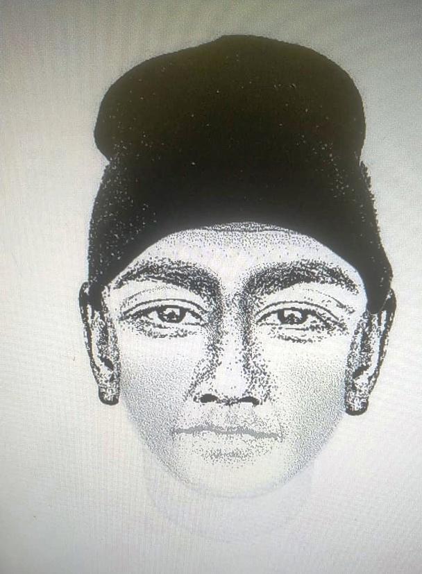 В лесу нашли череп мужчины, которого подозревают в убийстве жителя Твери