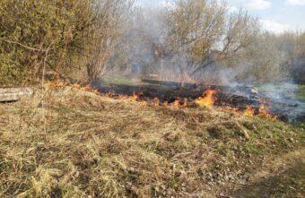 Первые полевые пожары тушили в Тверской области в трех районах