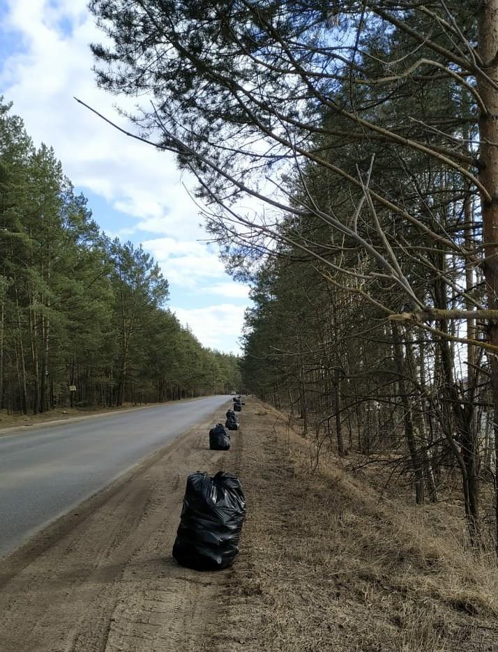 Активистка собрала с обочины под Тверью ещё 29 мешков мусора