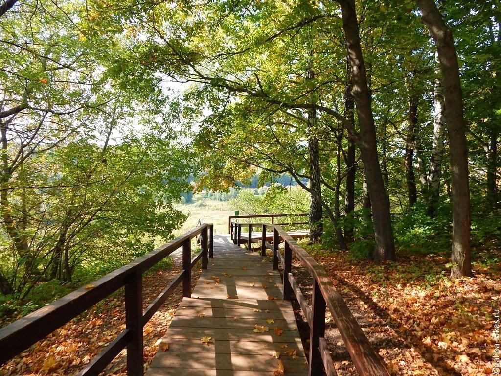 Первый в Тверской области природный парк создадут в Калязинском районе