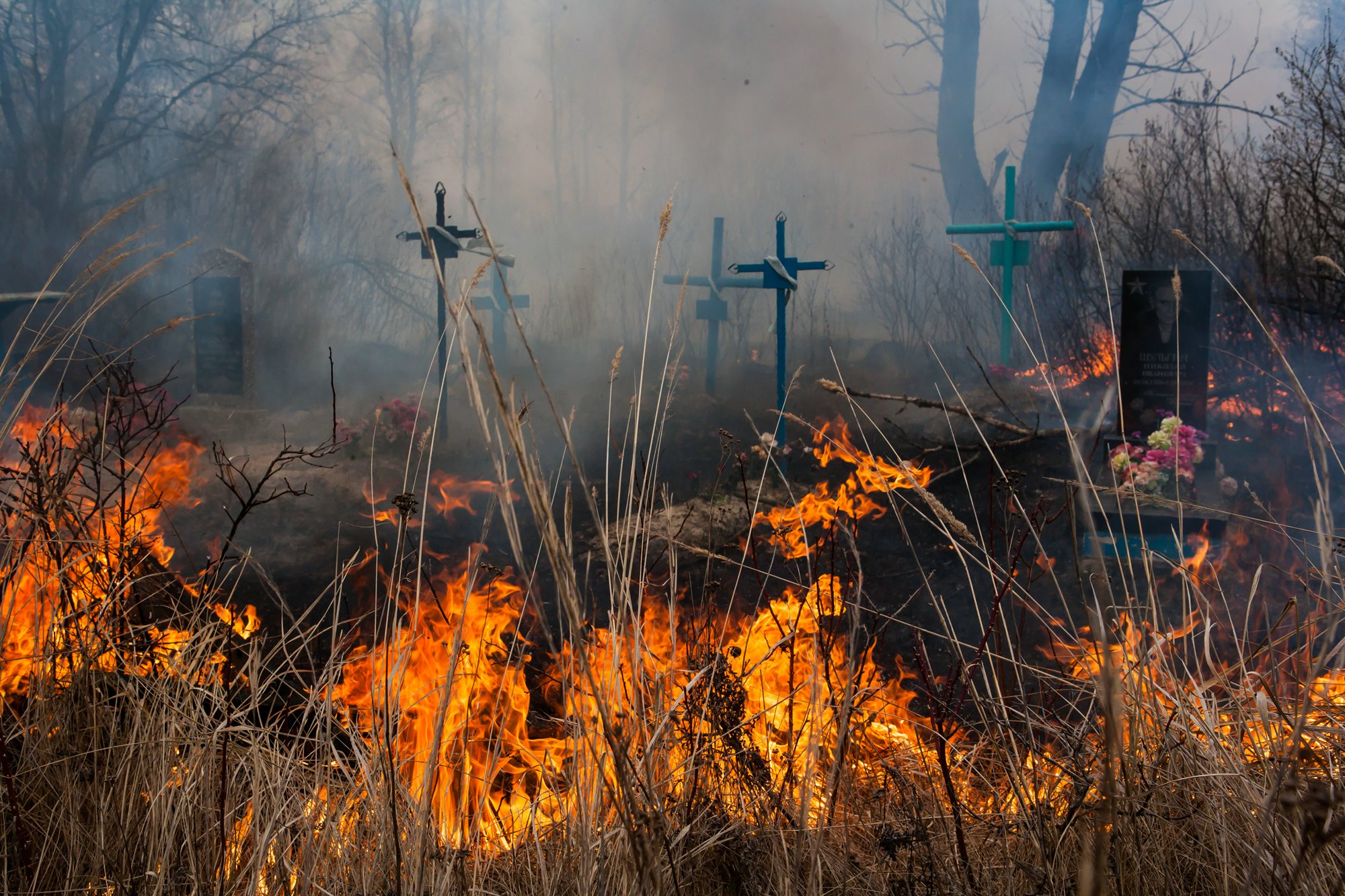 Под Тверью чуть не сгорело городское кладбище: видео