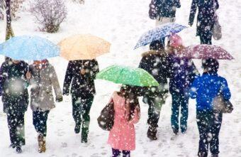 В Тверскую область тепло придёт с ливнем и снегопадом