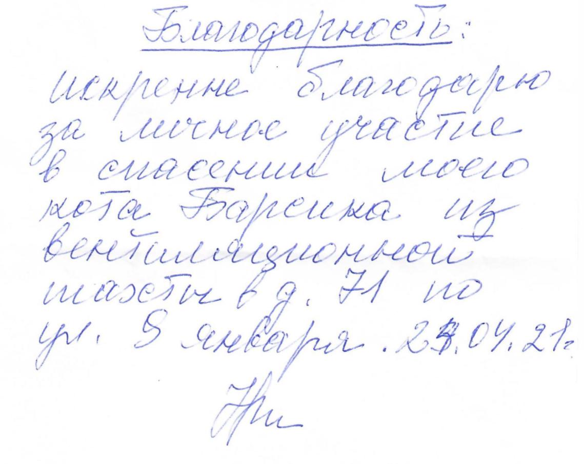 Хозяйка страдавшего в Тверской области Барсика обратилась к спасителям