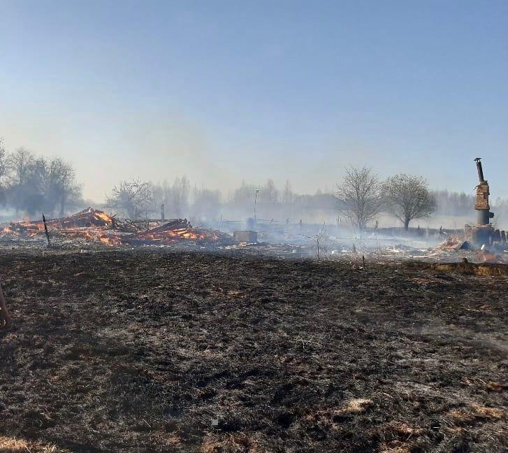 Целая деревня сгорела в Тверской области