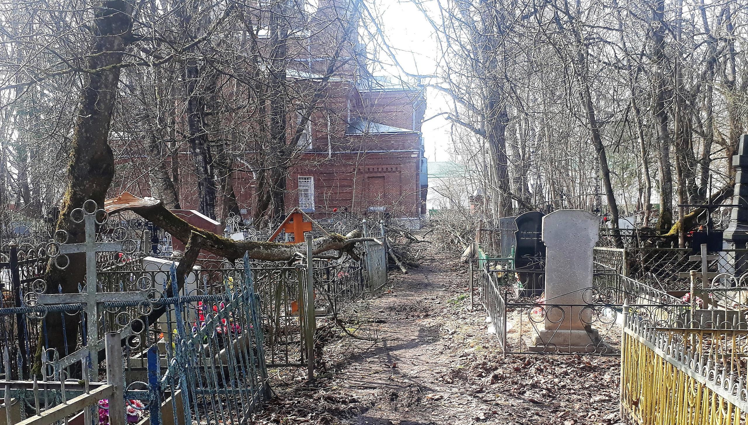 Старое кладбище в Тверской области может завалить деревьями