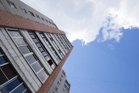 Житель Тверской области выкинул домашнего питомца из окна пятого этажа