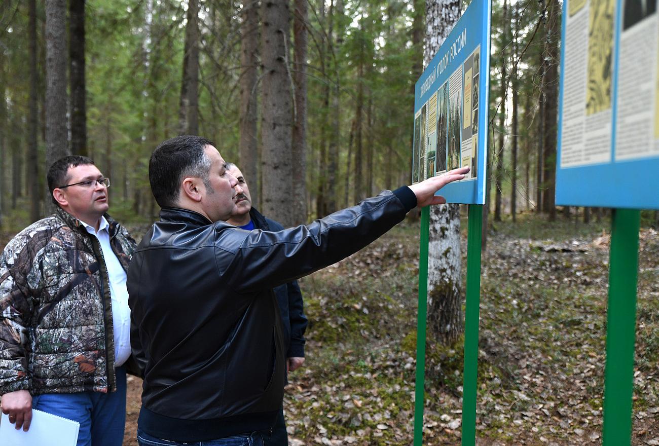 Исток Западной Двины в Тверской области приведут в порядок