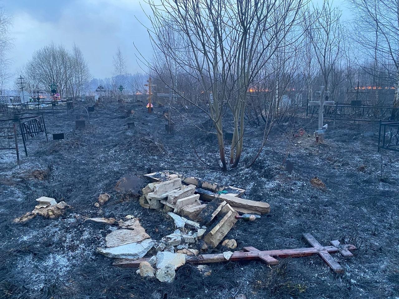 Пламя объяло кладбище в Тверской области