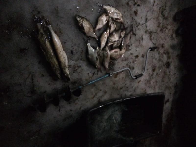 За 14 рыбин браконьер из Тверской области может попасть за решётку