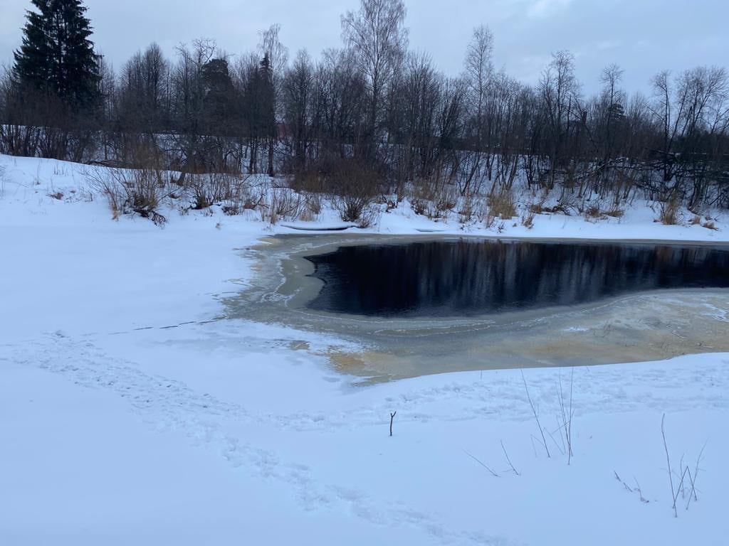 В школе Тверской области, где училась погибшая девочка, нашли нарушения