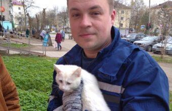 Спасатели Тверской области сняли с крыши магазина упавшего из окна котенка