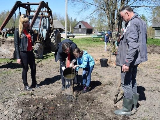 В Оленинском районе высадили фруктовый Сад Победы