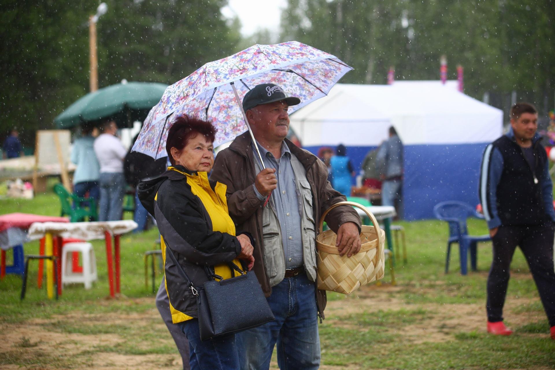 На выходных в Тверской области похолодает до +13 градусов