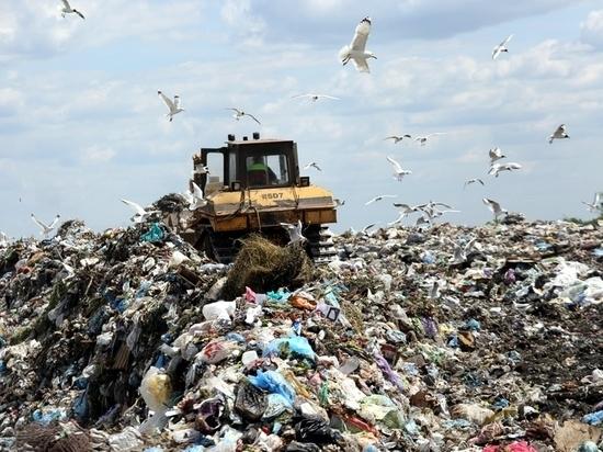 В Оленинском округе ликвидировали большую несанкционированную свалку отходов