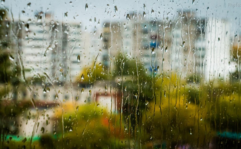 Дожди и ветра испортят в Тверской области длинные выходные